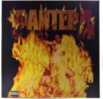 Pantera - Reinventing The Steel 180g