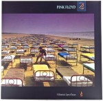 Pink Floyd - A Momentary Lapse Of Reason 180g 2016