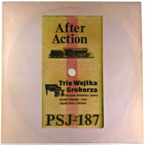 Trio Wojtka Groborza - After Action