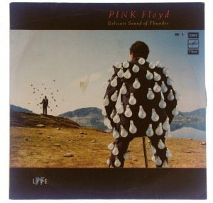 Pink Floyd - Delicate Sound Of Thunder No.1